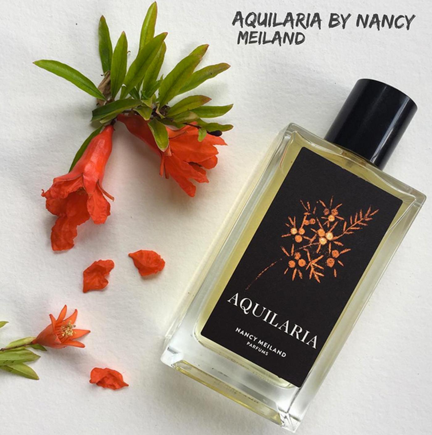 aquilaria-nancymeiland-wewearperfume